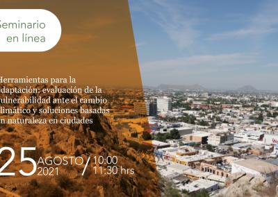 Herramientas para la adaptación: evaluación de la vulnerabilidad ante el cambio climático y soluciones basadas en naturaleza en ciudades